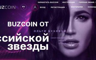 Бузкоин – что это такое: криптовалюта Ольги Бузовой