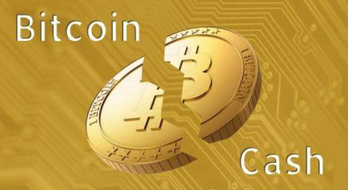 Перспектива биткоин кэш форекс ndd торговля