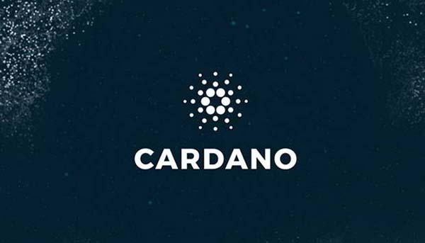 где хранить cardano